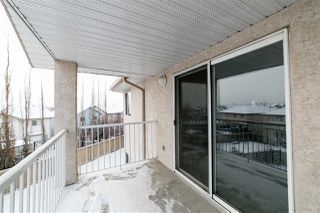 Photo 28: 329 16221 95 Street in Edmonton: Zone 28 Condo for sale : MLS®# E4192064