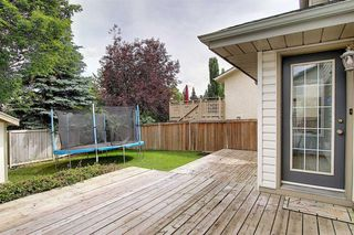 Photo 30: 133 SHAWBROOKE Close SW in Calgary: Shawnessy Detached for sale : MLS®# A1014574