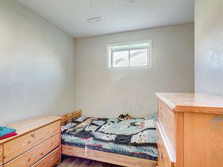 Photo 28: 239 PENBROOKE Way SE in Calgary: Penbrooke Meadows Detached for sale : MLS®# A1018945