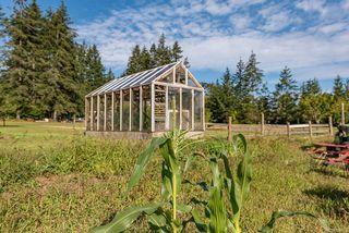 Photo 40: 8620 N Island Hwy in : CV Merville Black Creek House for sale (Comox Valley)  : MLS®# 851672