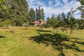 Photo 5: 8620 N Island Hwy in : CV Merville Black Creek House for sale (Comox Valley)  : MLS®# 851672