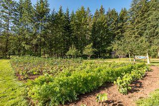 Photo 42: 8620 N Island Hwy in : CV Merville Black Creek House for sale (Comox Valley)  : MLS®# 851672