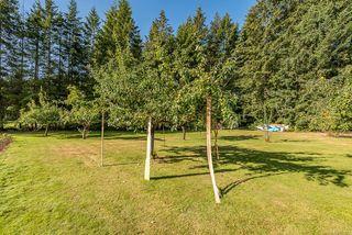 Photo 37: 8620 N Island Hwy in : CV Merville Black Creek House for sale (Comox Valley)  : MLS®# 851672