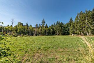 Photo 38: 8620 N Island Hwy in : CV Merville Black Creek House for sale (Comox Valley)  : MLS®# 851672