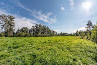 Photo 9: 8620 N Island Hwy in : CV Merville Black Creek House for sale (Comox Valley)  : MLS®# 851672