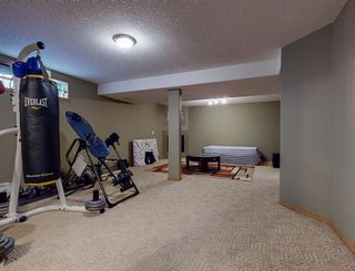 Photo 37: 31 HAMPSTEAD Way NW in Calgary: Hamptons Detached for sale : MLS®# A1021827