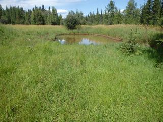 Main Photo: Near Highway 11A in Rural Clearwater County: NONE Agri-Business for sale : MLS®# A1024397