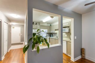 "Photo 9: 209 12155 191B Street in Pitt Meadows: Central Meadows Condo for sale in ""Edgepark Manor"" : MLS®# R2516213"