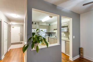 "Photo 9: 209 12155 191B Street in Pitt Meadows: Central Meadows Condo for sale in ""Edgepark Manor"" : MLS®# R2516213"