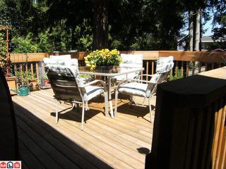 Photo 13: 1540 STEVENS Street: White Rock House for sale (South Surrey White Rock)  : MLS®# F1020224