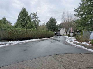 "Photo 14: 221 13624 67 Avenue in Surrey: East Newton Townhouse for sale in ""Hyland  Creek  Estates"" : MLS®# R2429636"