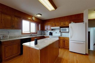 Photo 38: 50158 Rge Rd 241: Rural Leduc County House for sale : MLS®# E4196009