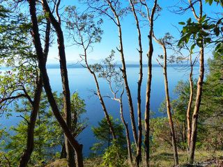 Photo 15: Lt 9 Ruxton Island in : Isl Ruxton Island Land for sale (Islands)  : MLS®# 857653