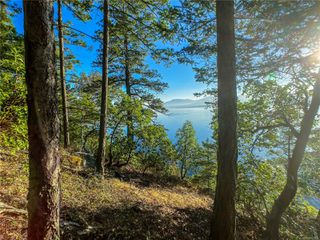 Photo 9: Lt 9 Ruxton Island in : Isl Ruxton Island Land for sale (Islands)  : MLS®# 857653