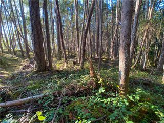Photo 11: Lt 9 Ruxton Island in : Isl Ruxton Island Land for sale (Islands)  : MLS®# 857653
