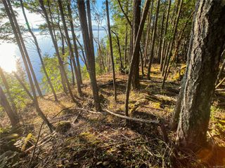 Photo 8: Lt 9 Ruxton Island in : Isl Ruxton Island Land for sale (Islands)  : MLS®# 857653