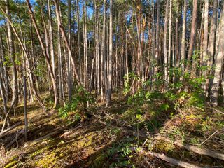 Photo 10: Lt 9 Ruxton Island in : Isl Ruxton Island Land for sale (Islands)  : MLS®# 857653