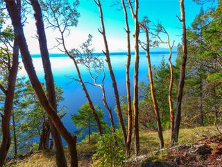 Photo 4: Lt 9 Ruxton Island in : Isl Ruxton Island Land for sale (Islands)  : MLS®# 857653