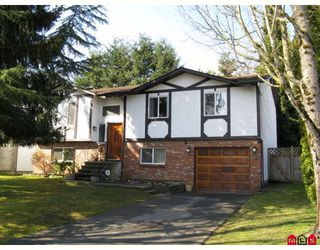 Main Photo: 6641 143A Street in Surrey: East Newton House for sale : MLS®# F2906660