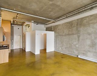"Photo 3: 203 495 W 6TH Avenue in Vancouver: Mount Pleasant VW Condo for sale in ""LOFT 495"" (Vancouver West)  : MLS®# V772175"