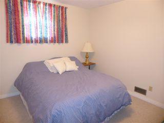 Photo 14: 11035 122 Street NW in Edmonton: Zone 07 House for sale : MLS®# E4176714