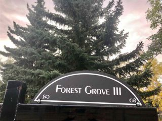 Photo 19: 67 FOREST Grove: St. Albert Townhouse for sale : MLS®# E4176790