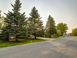 Photo 47: 1233 Smith Avenue: Crossfield Detached for sale : MLS®# A1034892