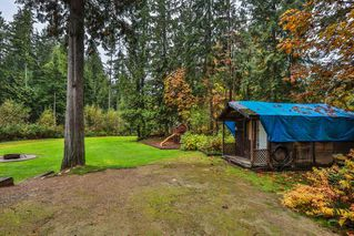 Photo 16: 9121 VICKERY Street in Mission: Mission BC House for sale : MLS®# R2505370