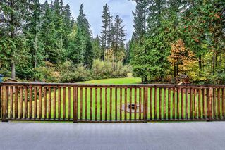 Photo 8: 9121 VICKERY Street in Mission: Mission BC House for sale : MLS®# R2505370