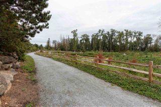 """Photo 14: 409 19320 65 Avenue in Surrey: Clayton Condo for sale in """"Esprit"""" (Cloverdale)  : MLS®# R2399760"""