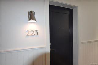 Photo 3: 223 1610 Store St in Victoria: Vi Downtown Condo Apartment for sale : MLS®# 843798