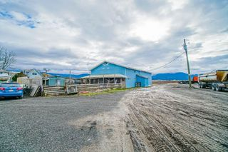 Photo 36: 35826 SOUTH PARALLEL Road in Abbotsford: Sumas Prairie Agri-Business for sale : MLS®# C8035413