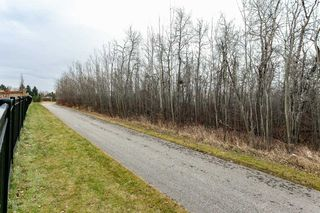 Photo 40: 62 ENCHANTED Way N: St. Albert House for sale : MLS®# E4179122