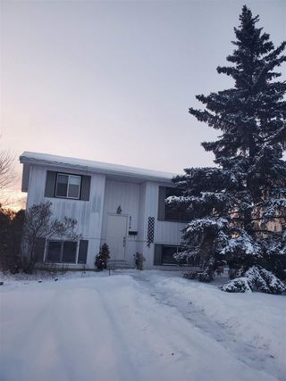 Photo 3: 4718 37A Avenue in Edmonton: Zone 29 House for sale : MLS®# E4183878