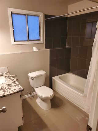 Photo 15: 4718 37A Avenue in Edmonton: Zone 29 House for sale : MLS®# E4183878