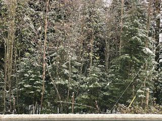 """Photo 1: 5867 CHIEF LAKE Road in Prince George: North Kelly Land for sale in """"CHIEF LAKE RD"""" (PG City North (Zone 73))  : MLS®# R2466938"""