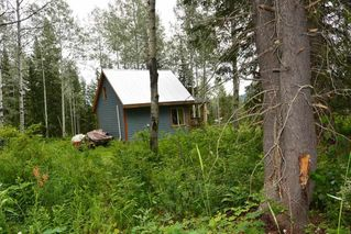 "Photo 18: 18865 GRANTHAM Road in Smithers: Smithers - Rural House for sale in ""Grantham"" (Smithers And Area (Zone 54))  : MLS®# R2389601"