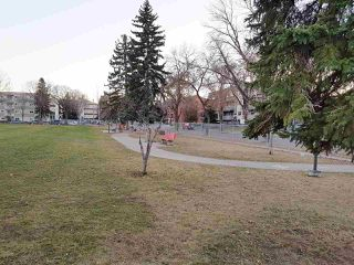 Photo 15: 205 9116 106 Avenue in Edmonton: Zone 13 Condo for sale : MLS®# E4166309