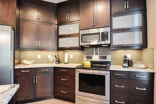 Photo 16: 131 NORTH RIDGE Drive: St. Albert House for sale : MLS®# E4203433