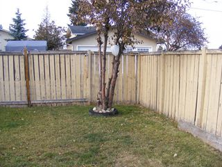 Photo 31: 182 Pennsburg Way SE in Calgary: Penbrooke Meadows Detached for sale : MLS®# A1047205