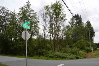 Photo 5: 16836 94A Avenue in Surrey: Fleetwood Tynehead Land for sale : MLS®# R2447283