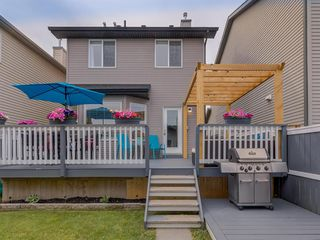 Photo 48: 180 SILVERADO Way SW in Calgary: Silverado Detached for sale : MLS®# A1016012