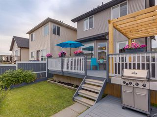 Photo 49: 180 SILVERADO Way SW in Calgary: Silverado Detached for sale : MLS®# A1016012