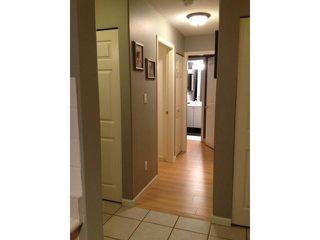 Photo 5: 203 1119 VIDAL Street: White Rock Home for sale ()  : MLS®# F1431415