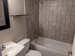 Photo 15: 10128 88 Avenue in Edmonton: Zone 15 House for sale : MLS®# E4217652