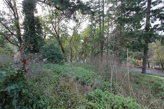 Photo 6: 299 Gull Rd in : VR View Royal Land for sale (View Royal)  : MLS®# 860828