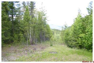 Photo 26: Vernon Slocan Hwy #6: East of Lumby House for sale (Vernon)  : MLS®# 10058138