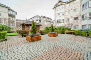 "Photo 20: 307 8139 121A Street in Surrey: Queen Mary Park Surrey Condo for sale in ""THE BIRCHES"" : MLS®# R2435520"