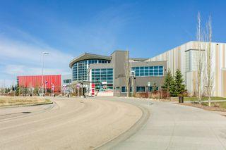 Photo 43: 684 LEGER Way in Edmonton: Zone 14 House for sale : MLS®# E4196372
