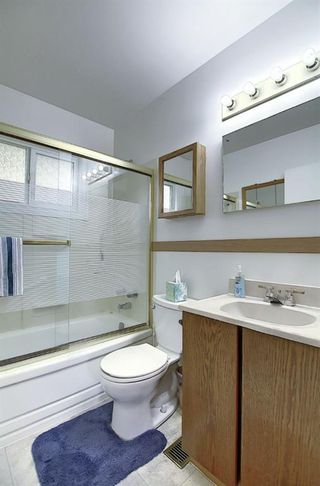 Photo 17: 68 Ferncliff Crescent SE in Calgary: Fairview Detached for sale : MLS®# A1040118